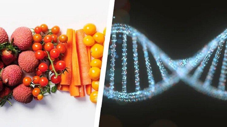 رژیم غذایی مطابق با DNA چیست و چه معایبی دارد؟