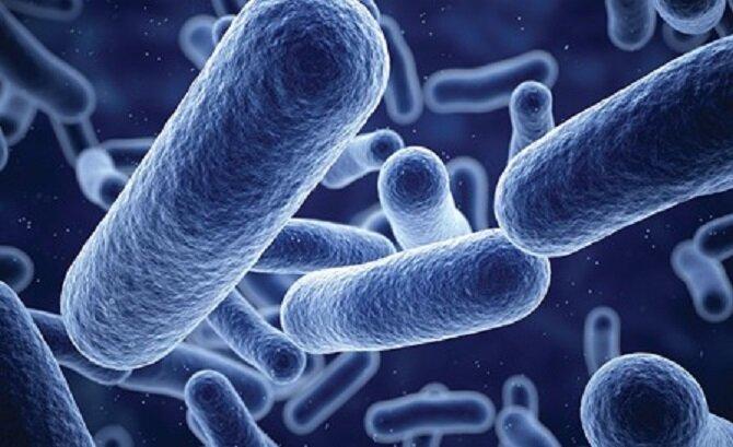 کاهش آلودگی سطوح با تولید پوشش ضد میکروب ایرانی