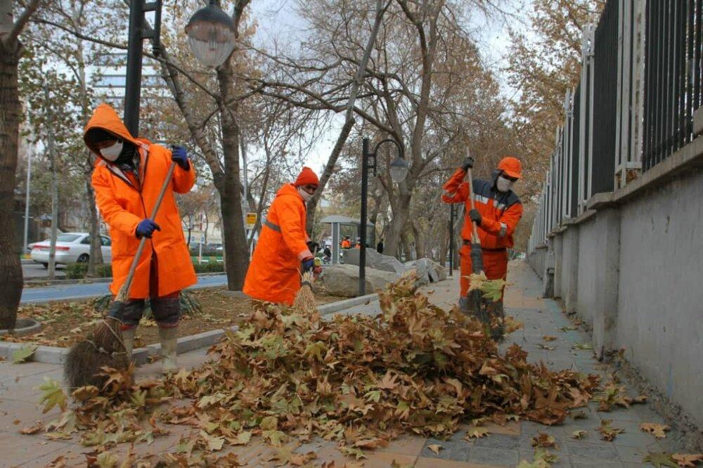 جمع آوری بیش از ۵۰۰ تن برگ پاییزی در مشهد