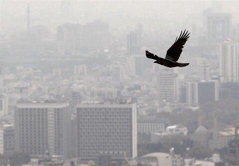 بیانیه وکلای استان اصفهان درباره آلودگی هوا