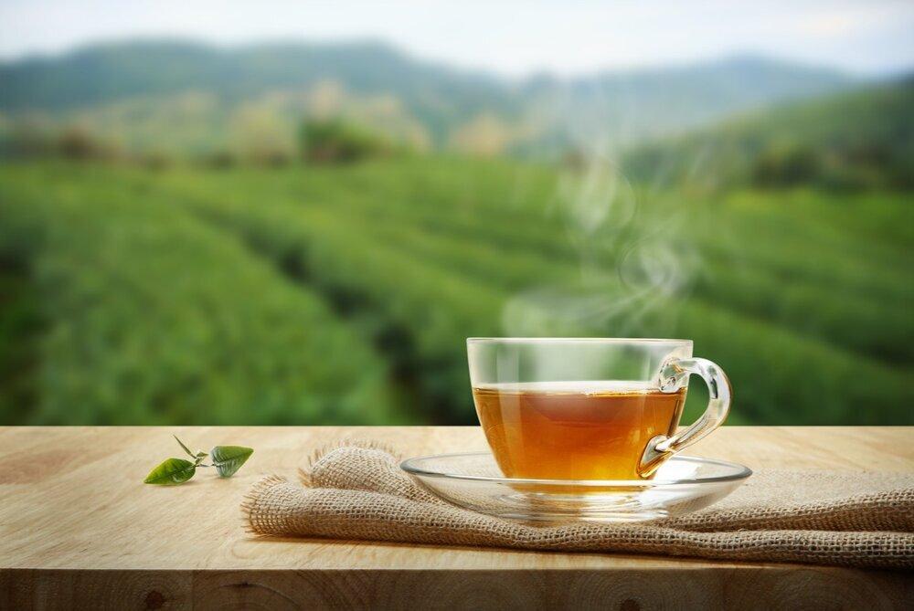 بهبود تمرکز با نوشیدن چای