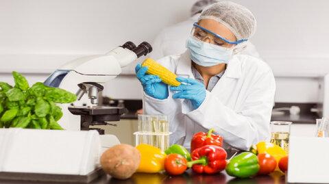 افزایش کیفیت مواد غذایی به کمک فناوری نانو