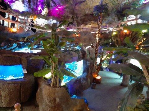 Ganjnameh cave aquarium in Hamedan