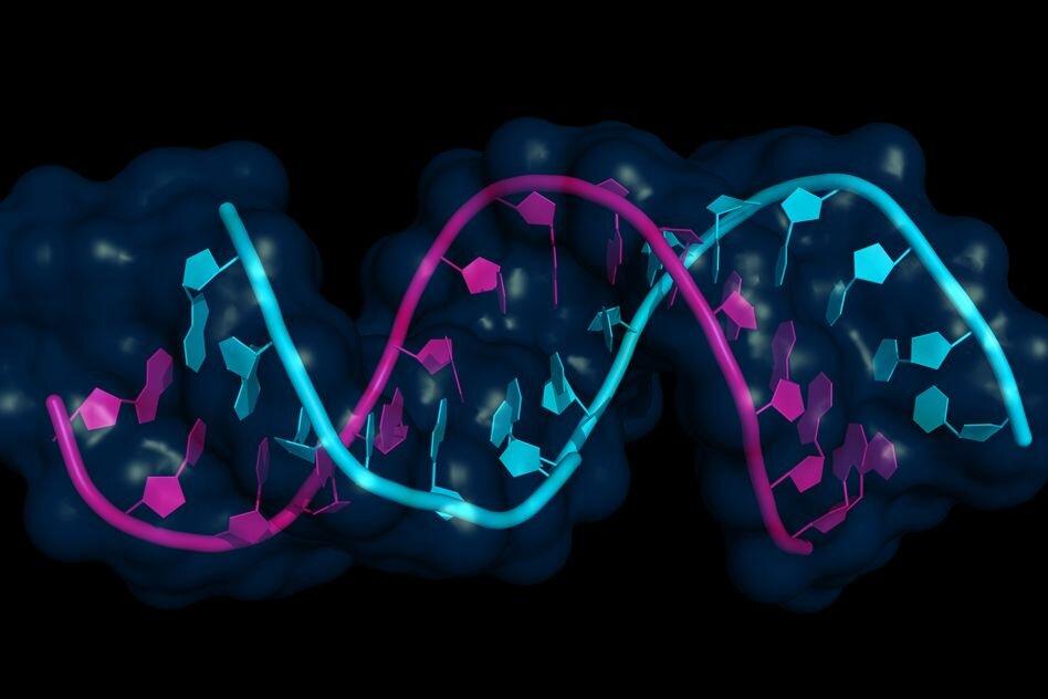 تحقیقات درمان سرطان با mRNA وارد ترایال انسانی شد