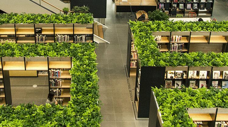 احداث کتابخانه دوستدار محیط زیست در شهر ساری