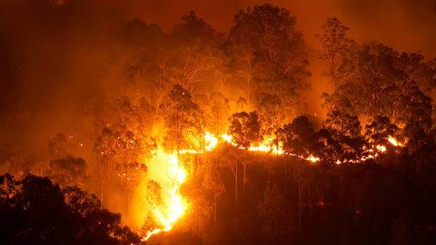 اعلام آمادگی ایران برای مهار آتش جنگل های مرزی آستارا