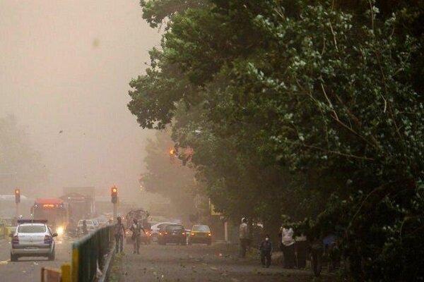 سقوط ۷۳ اصله درخت در گرگان بر اثر طوفان/نظافت عمومی شهر به هم ریخت