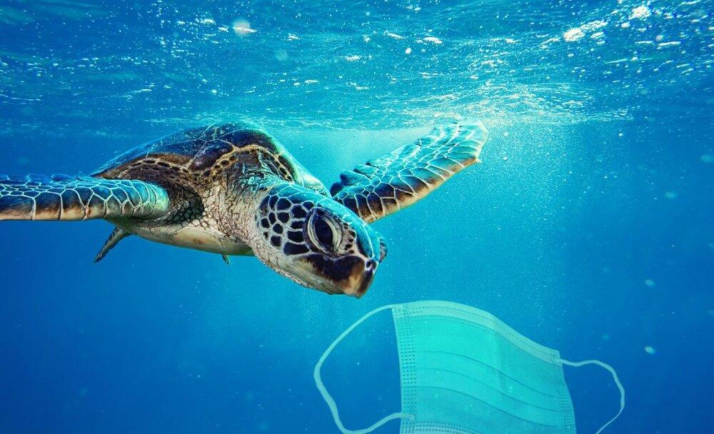 راهکار مقابله با آلودگی ناشی از ماسکها