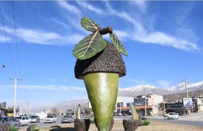 نصب المان بلوط در پایتخت طبیعت ایران