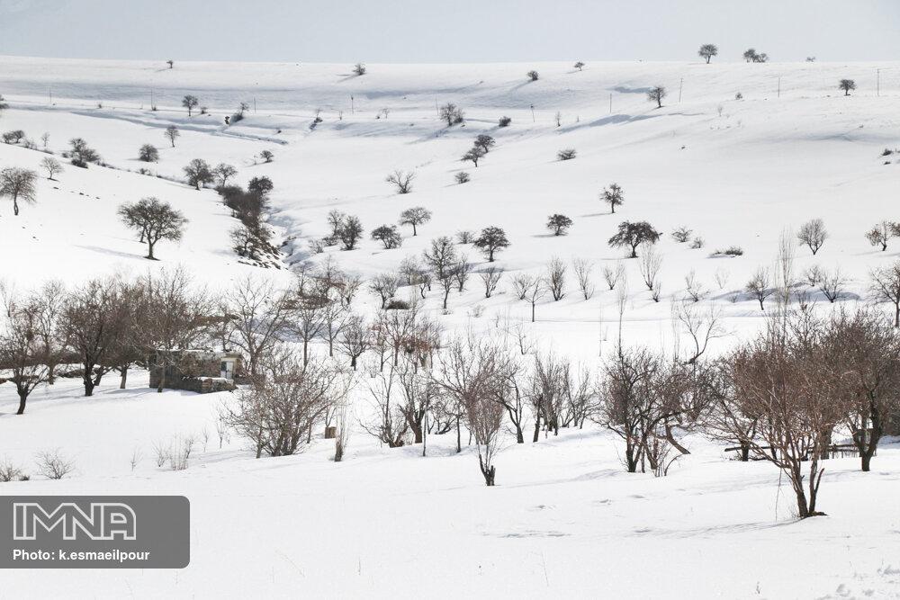 بارش برف فریدونشهر را سفیدپوش کرد/سرعت وزش باد در نطنز ۱۰۰ کیلومتر بر ساعت