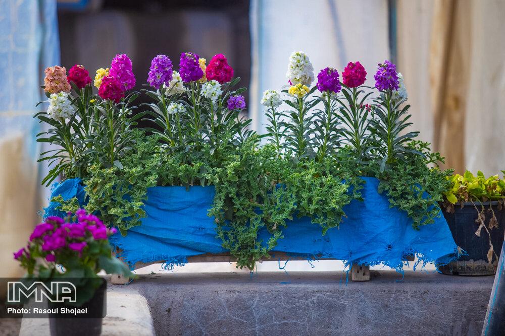 آغاز اجرای طرح استقبال از بهار ۱۴۰۰ در چالوس