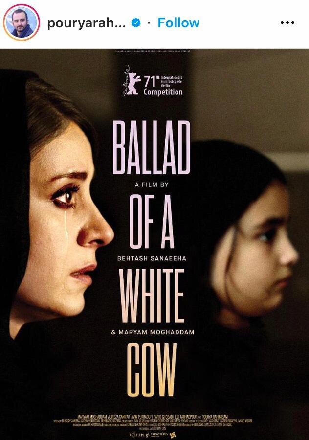 رونمایی از پوستر بینالمللی فیلم قصیده گاو سفید