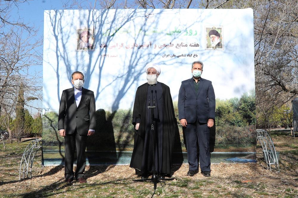 روحانی: حفظ و گسترش درختان و مراتع به معنای امنیت غذایی و ملی است