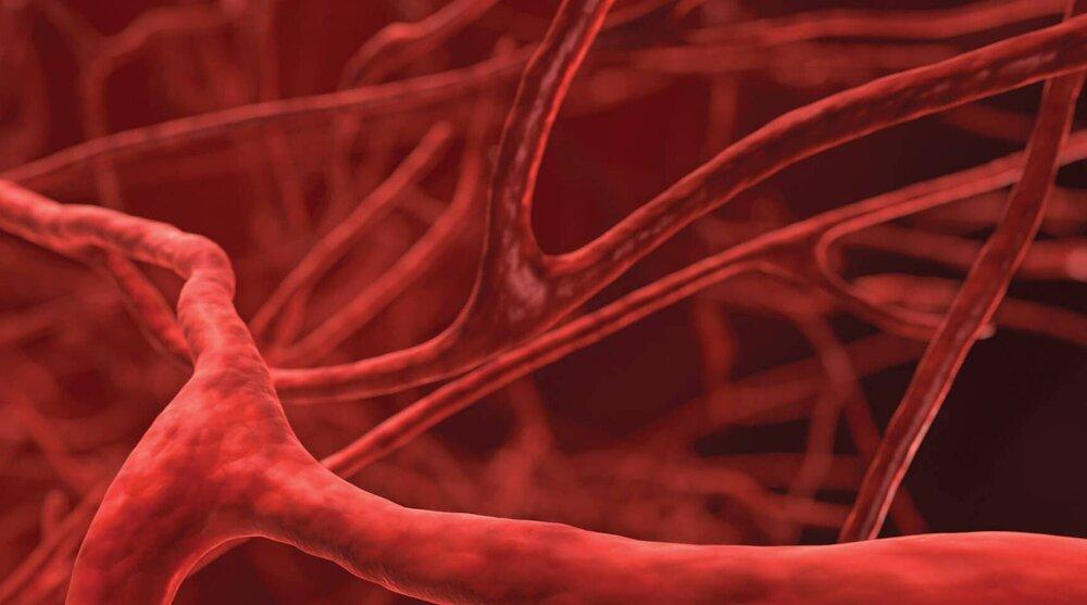چگونه گردش خون خود را بهبود بخشیم؟