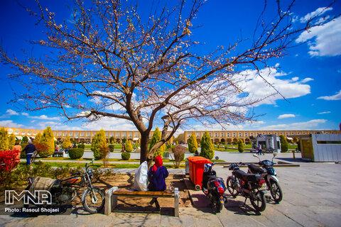 هوای اولین روز بهار در اصفهان سالم است
