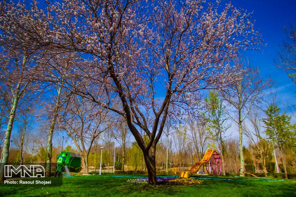 هوای بهاری اصفهان همچنان سالم است