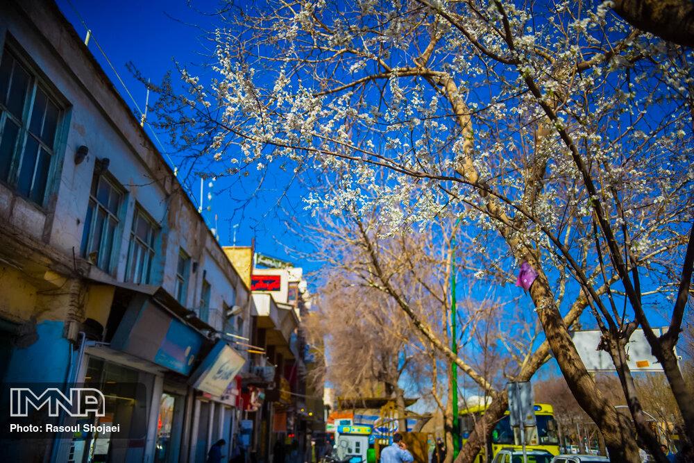 هوای اصفهان تا ۵ درجه سردتر میشود/ کاهش شدت وزش باد