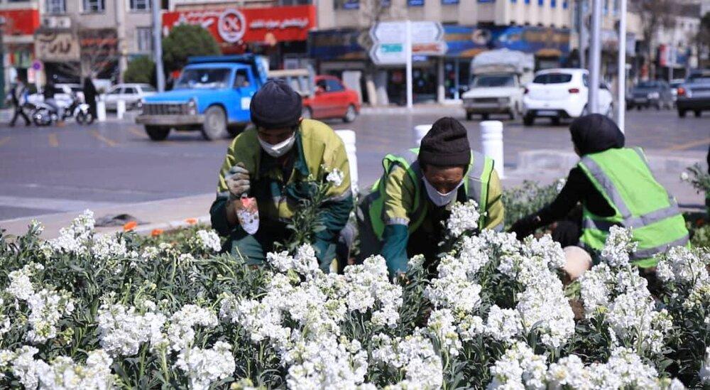 چهره بهاری شهر سمنان با کاشت ۲۹ هزار گل