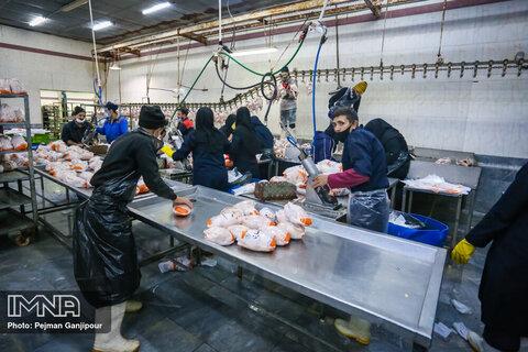 التهاب بازار مرغ در اصفهان