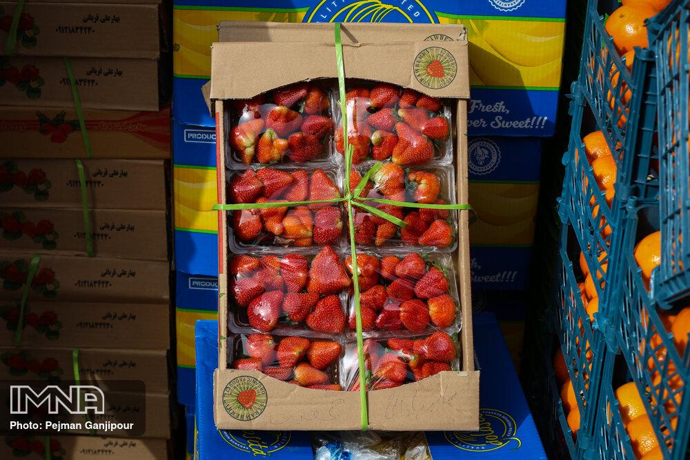 جهانگیری: میوههای در معرض فساد ارتباطی به ستاد تنظیم بازار ندارد