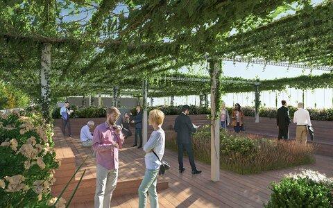 بهبود کیفیت هوا با احداث جنگل شهری در رومانی