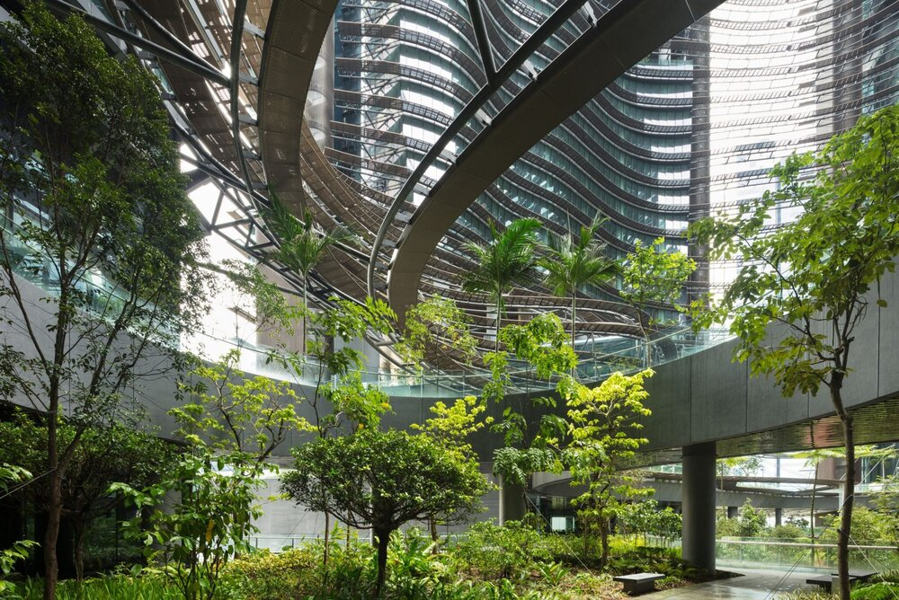 فضاهای سبز شهری؛ راه گریزی از قرنطینههای کرونایی