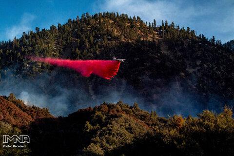 پاشیدن مواد بازدارنده آتش از یک هواپیما بر مناطق آتش گرفته در پارک ملی Angeles در کالیفرنیا