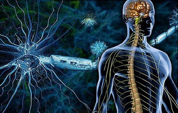 ۱۳ آوریل، روز جهانی آگاهی از اختلال عصبی عملکردی