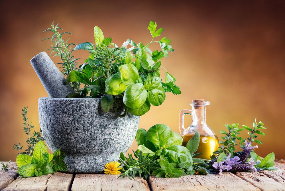 فناوران برای نمایش ظرفیتهای گیاهان دارویی به سوریه میروند