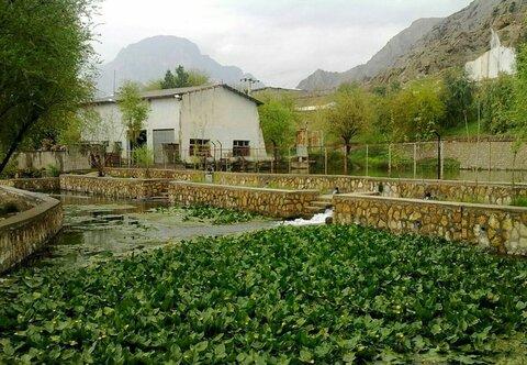 سراب نیلوفر خرمآباد ثبت ملی شد