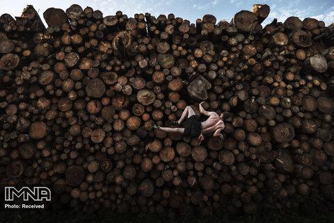 رتبه اول تک تصویر ورزشی تمرین سنگ نوردی با بالارفتن از انباشتهای از کنده های درخت در آلمان
