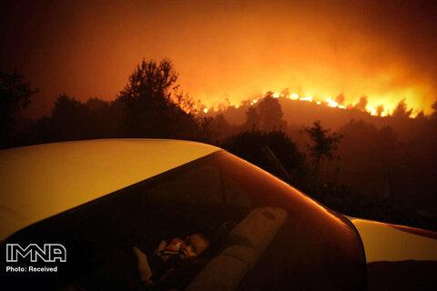 رتبه سوم تک تصویر اخبار فوری کودک پرتغالی آرام در ماشین نشسته است در حالیکه جنگلهای مجاور در آتشی گسترده میسوزد
