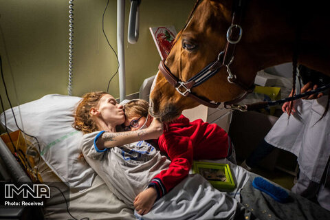 رتبه دوم تک تصویر چالش های معاصر زن مبتلا به سرطان بدخیم در فرانسه که تحت درمان مداخلهای به کمک حیوانات قرار دارد، پسرش را در آغوش گرفته است