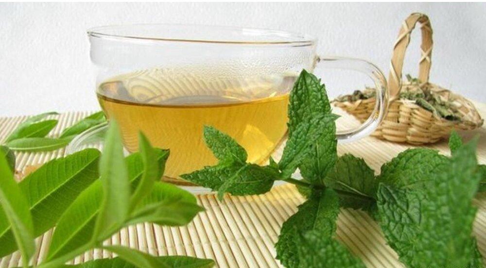 گیاه نعناع و فواید مصرف آن در ماه مبارک رمضان