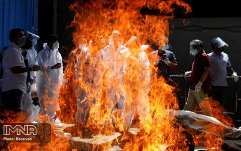 سوزاندن جنازه ها آغاز می شود
