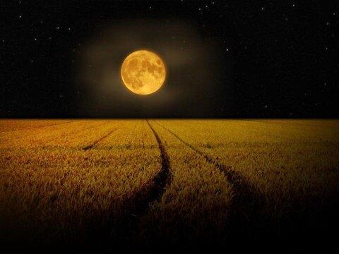 صوت دعای روز بیست و یکم ماه مبارک رمضان + دانلود، ترجمه