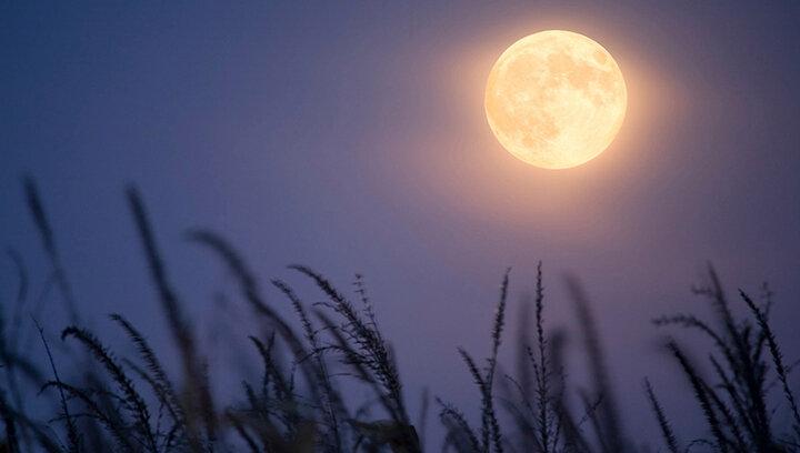 صوت دعای روز  بیست و سوم ماه مبارک رمضان(شب قدر) + دانلود، ترجمه