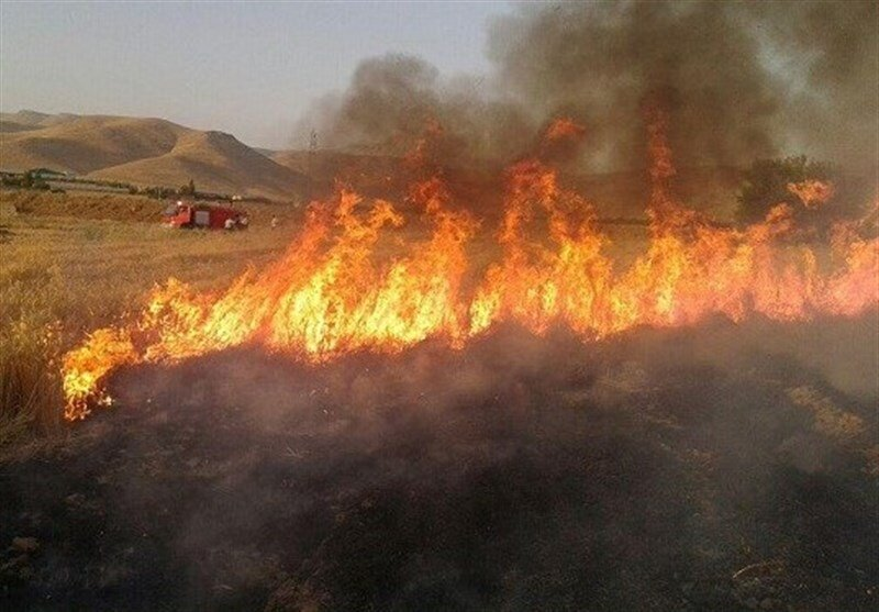 آتش زدن مزارع، سلامت و بهداشت عمومی را تهدید میکند