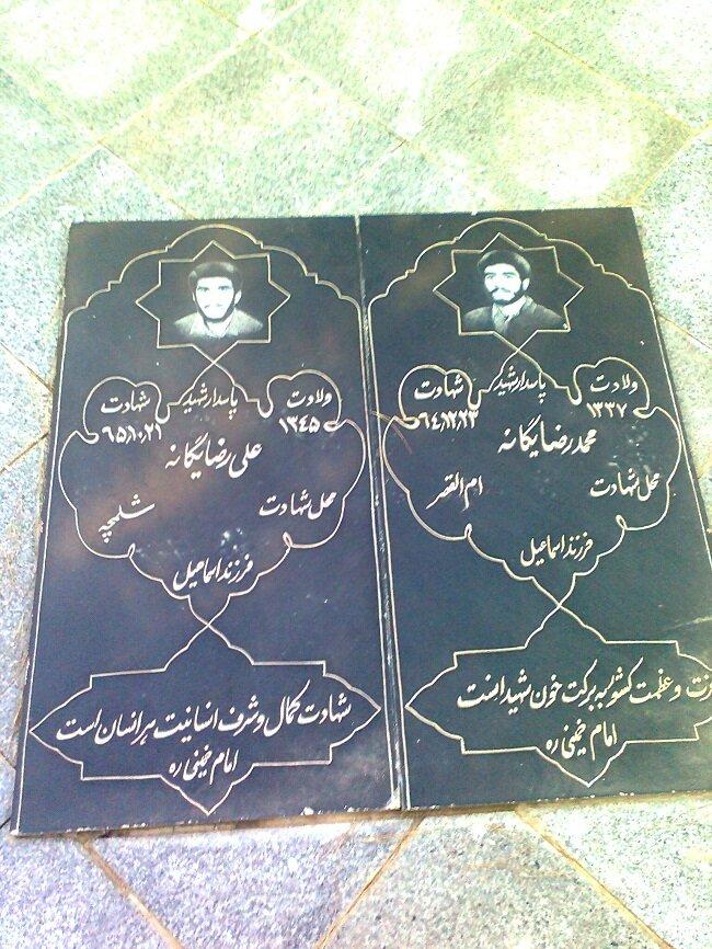 محسن یگانه از نشکن دلمو تا بهت قول میدم + بیوگرافی و ازدواج