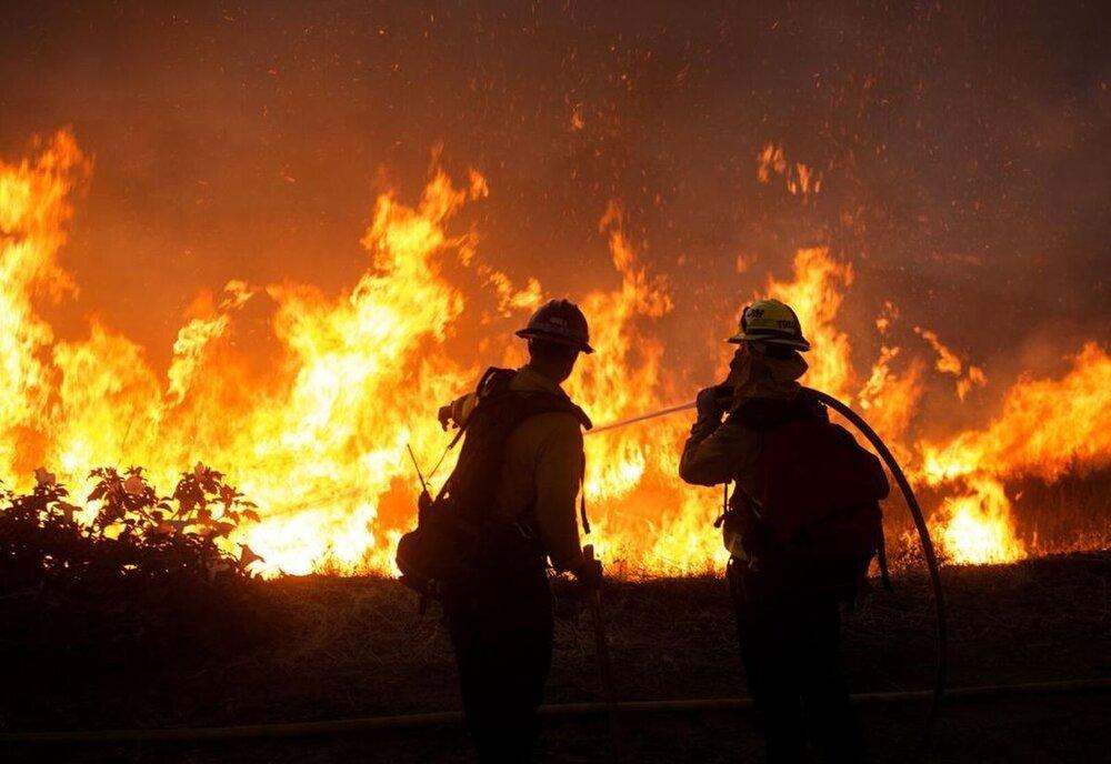 آتشسوزی باغها عمدی و توسط افراد ناشناس صورت میگیرد