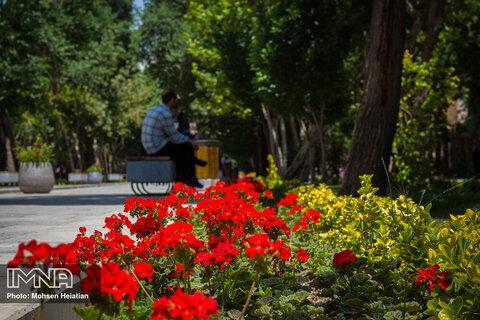 کاشت ۲۰ هزار گل فصلی در آستارا