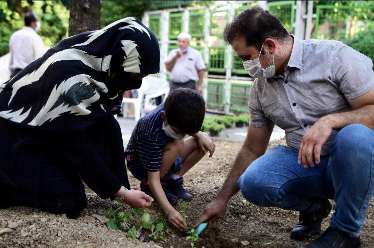 شهروندان شهرکهای تهران باغچه مشارکتی میکارند