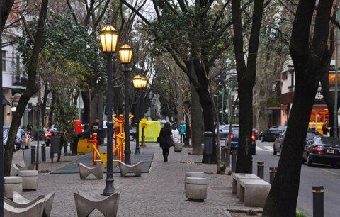 مزایای وجود درختان در فضاهای شهری