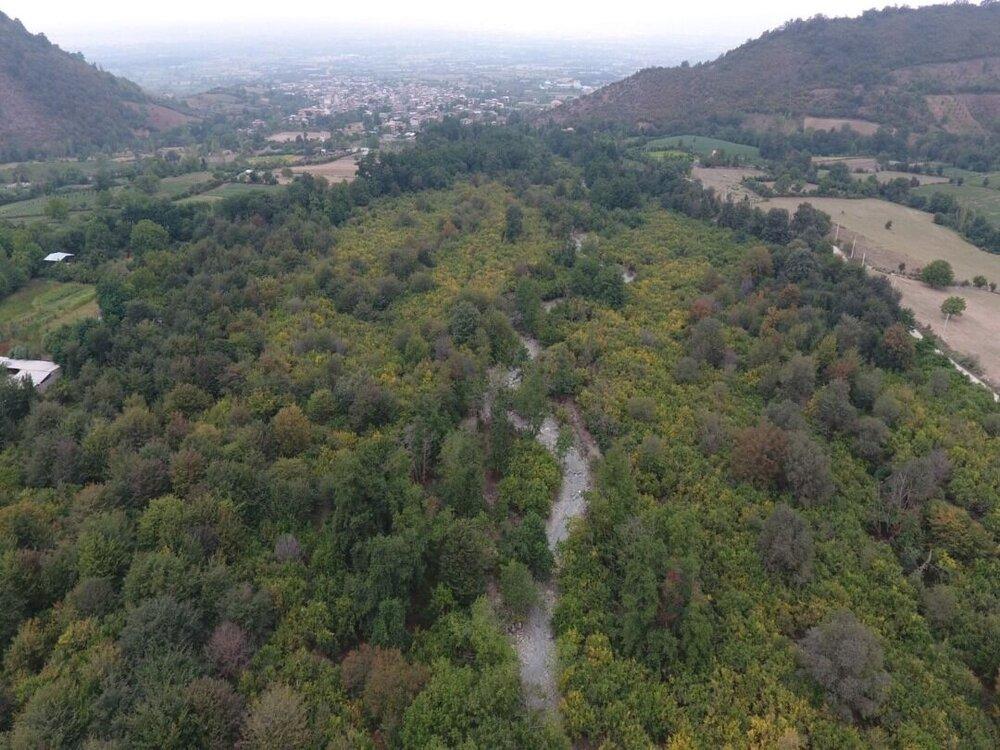 هوشمندسازی پارک ملی گلستان برای مقابله با آتشسوزی