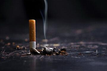 روز جهانی بدون دخانیات ۲۰۲۱ + از تاریخچه، اهداف و شعار تا روش ترک سیگار