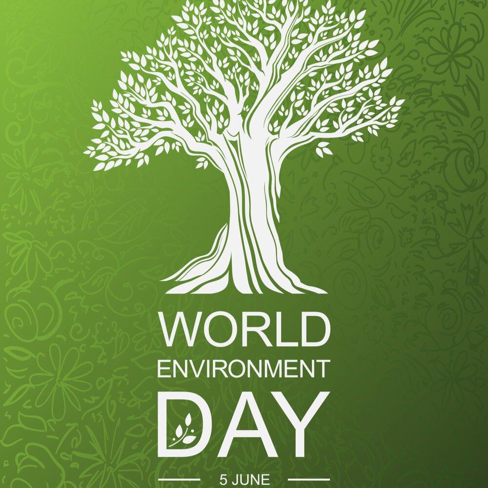 روز جهانی محیط زیست ۱۴۰۰ + تاریخ، شعار، هدف و  تعریف محیط زیست