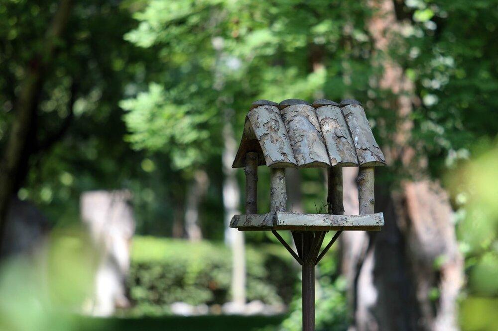 احداث اولین سایت پرندهنگری در بوستان وکیل آباد مشهد
