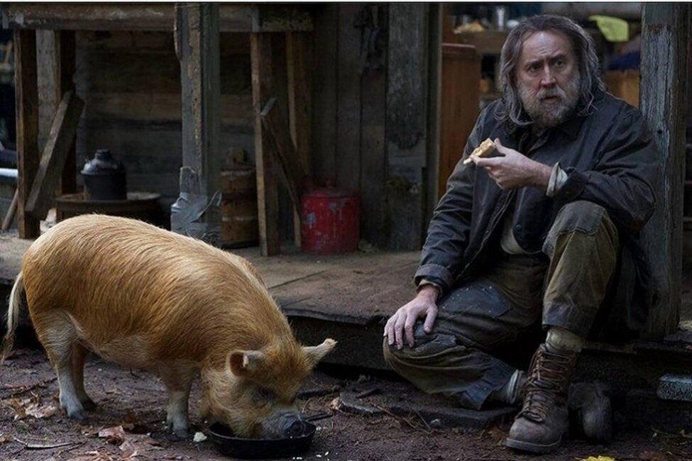 بازگشت نیکلاس کیج با فیلم «خوک» + تیزر