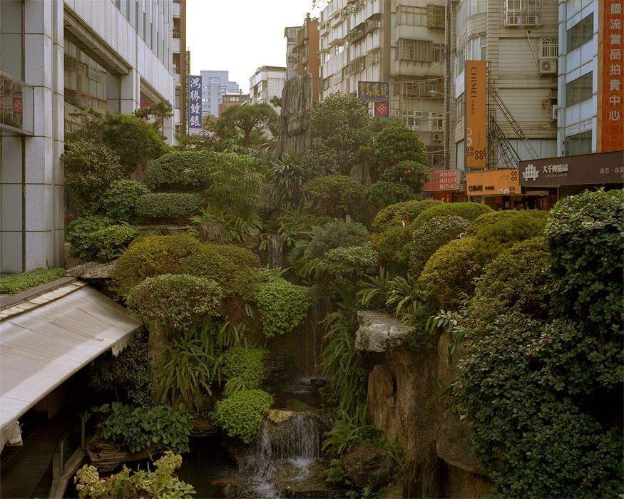 مزایای احداث جنگلهای کوچک در شهرهای بزرگ