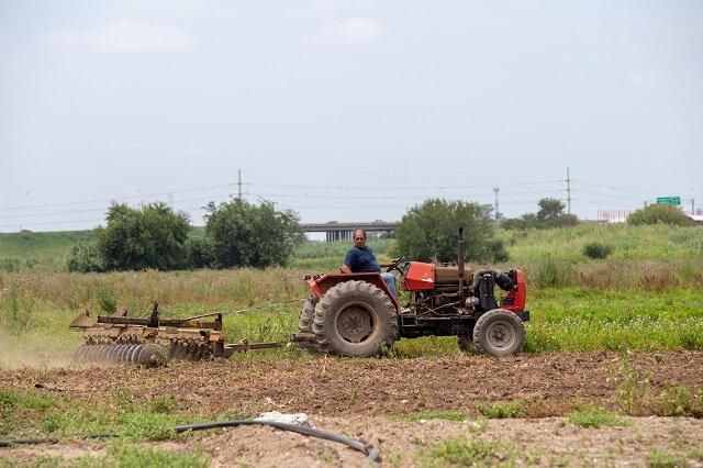 حل بحرانهای اقلیمی و اقتصادی با احداث مزارع شهری